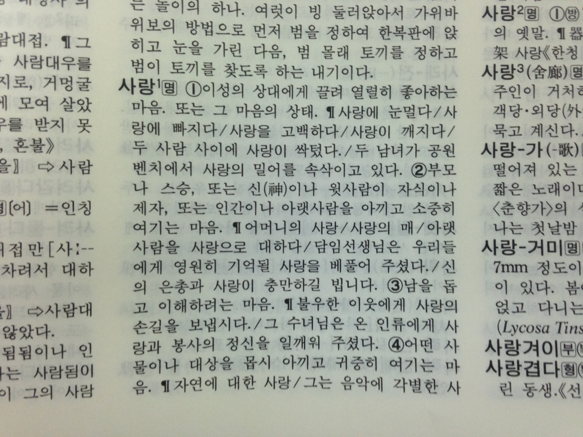 Korean Dictionary Reverts to Homophobic State
